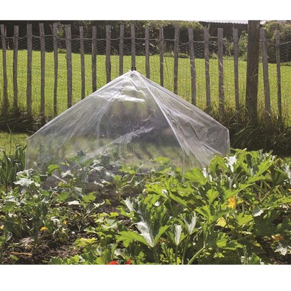 Lanterna minidrivhus - Poly, Giant-Ihopfällbar odlingstunnel/drivhus med polyeten