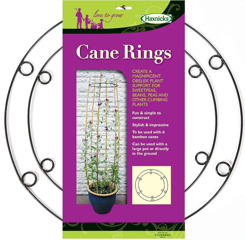 CaneRings - hållare till bambukäppar