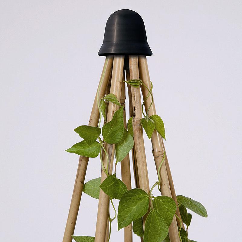Växtstöd, 8 CaneTopper, svart-CaneTopper 8-växtstöd för blomkäppar, svart
