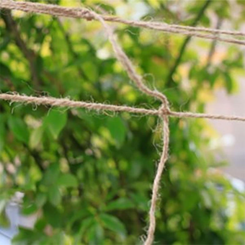 Jutenät för stöd av klätterväxter-Jutenät för stöd av klätterväxter