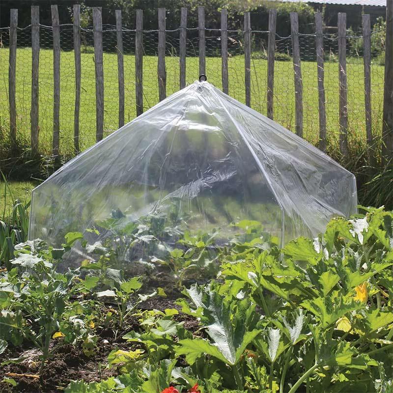 Ihopfällbar odlingstunnel/drivhus med polyeten
