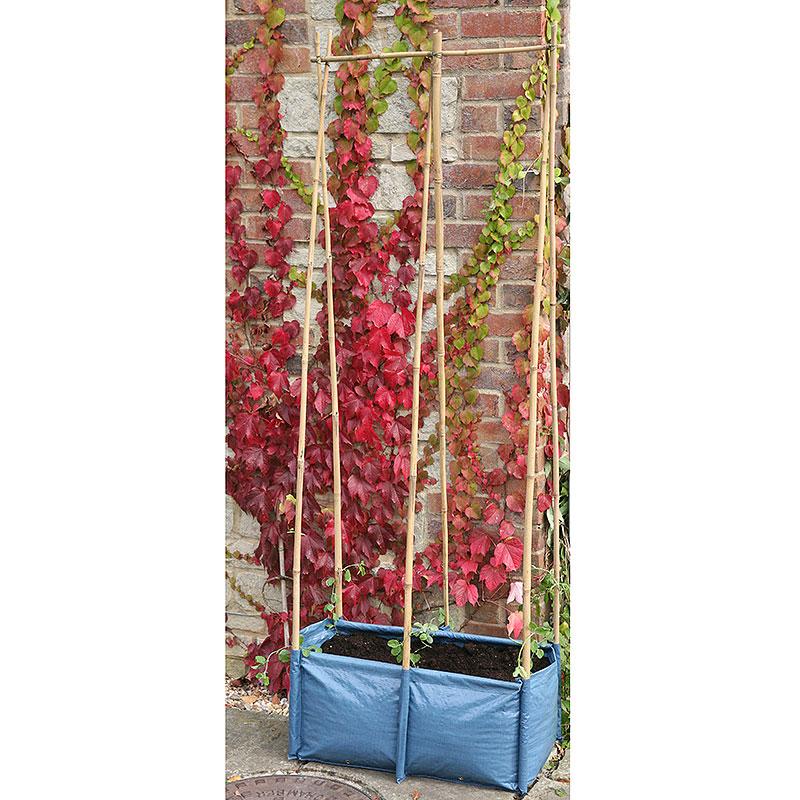 Odlingssäck med plats för växtstöd, Odlingsstöd för baljväxter, ärtor, bönor