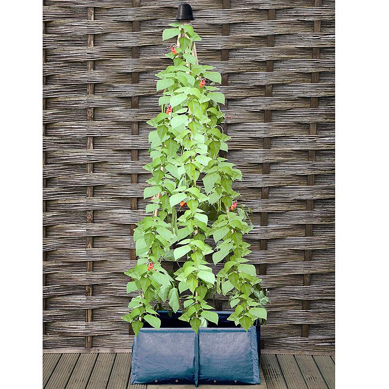 Odlingssäck med plats för växtstöd-Odlingssäck med plats för växtstöd