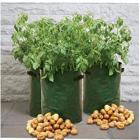 Potatisodling för balkong och terass, 3-pack-Potatissäck för odling på balkong och terass