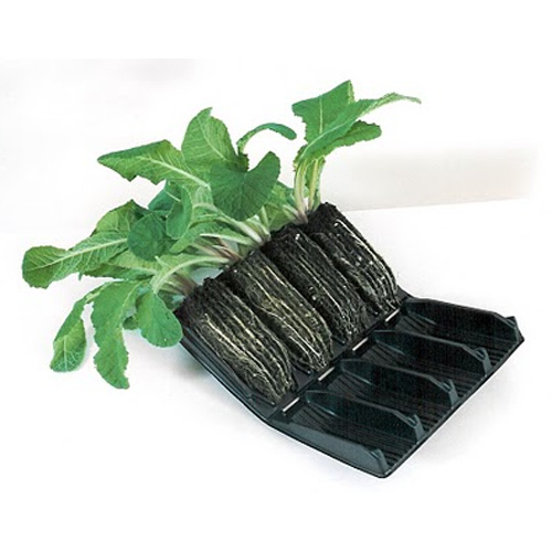 Deep Rootrainer - pluggar-Rootrainer pluggar för odling av fröer och sticklingar