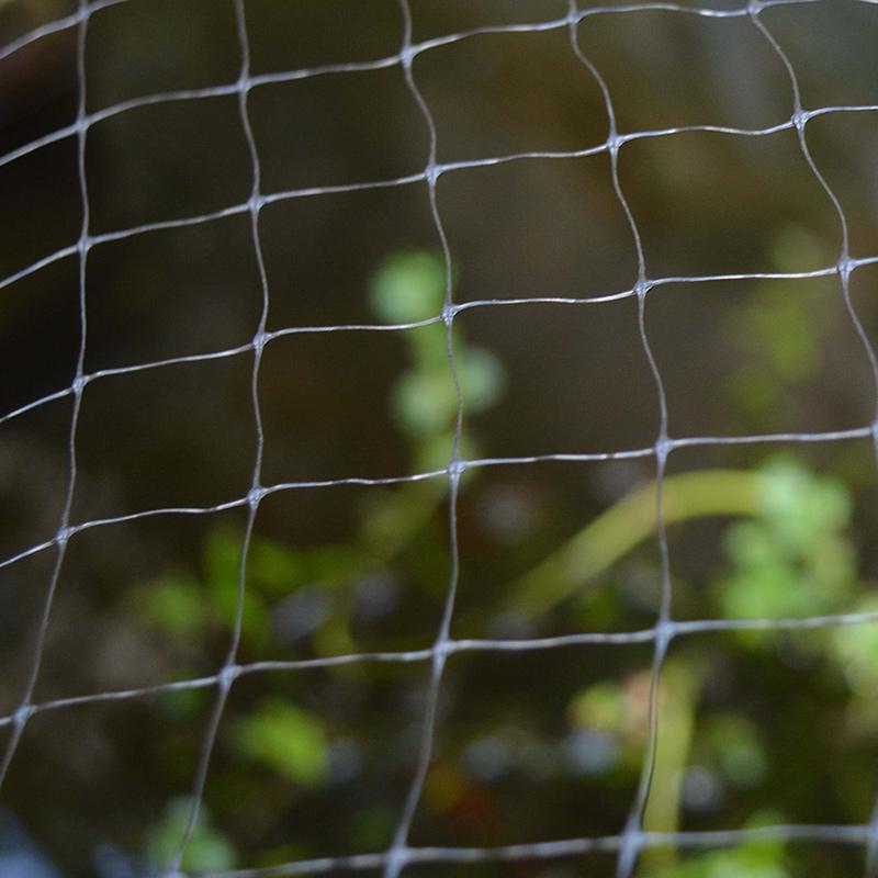 Skyddsnät för växter och dammar, 2x10 m