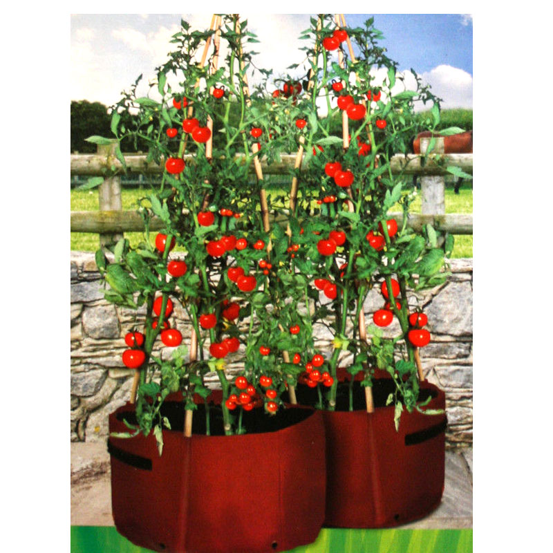 Tomato Patio Planter, 2-pack-Odlingssäck för odling av tomater på balkong och terass
