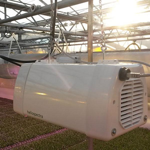 LX601-G - LED växtbelysning,