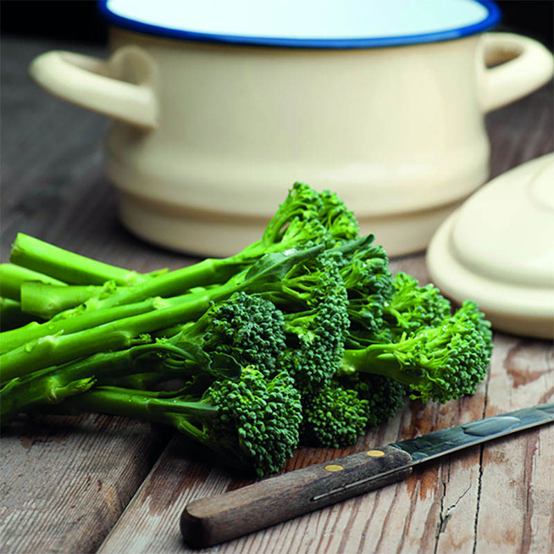 Broccoli ORG BROCCOLI Green Sprouting, Frö till Broccoli ORG BROCCOLI Green Sprouting