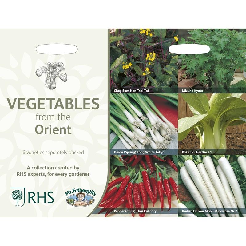 Frö till Orientaliska köksväxter 6 sorter