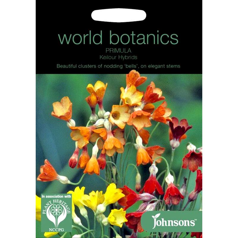 Frö till Primula Florindae Keilour Hybr