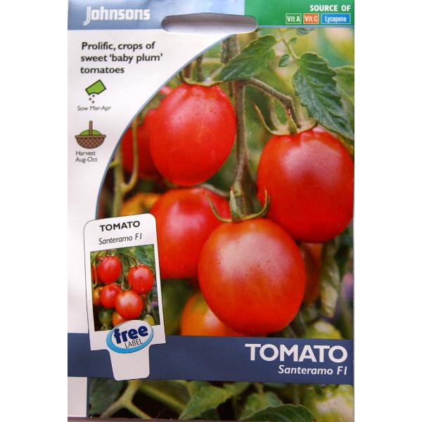 Frö till Tomat