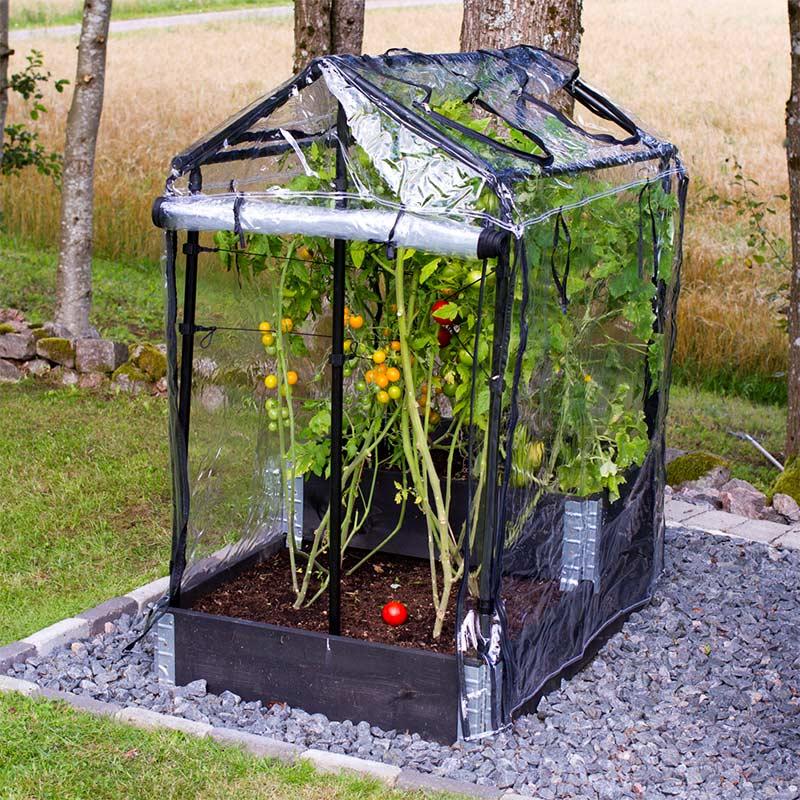 Pallkrageväxthus för odlingskrage och friland