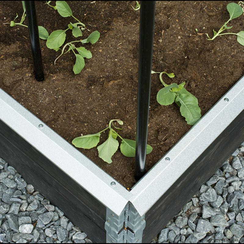 Snigelkant för odlingskrage, stor,