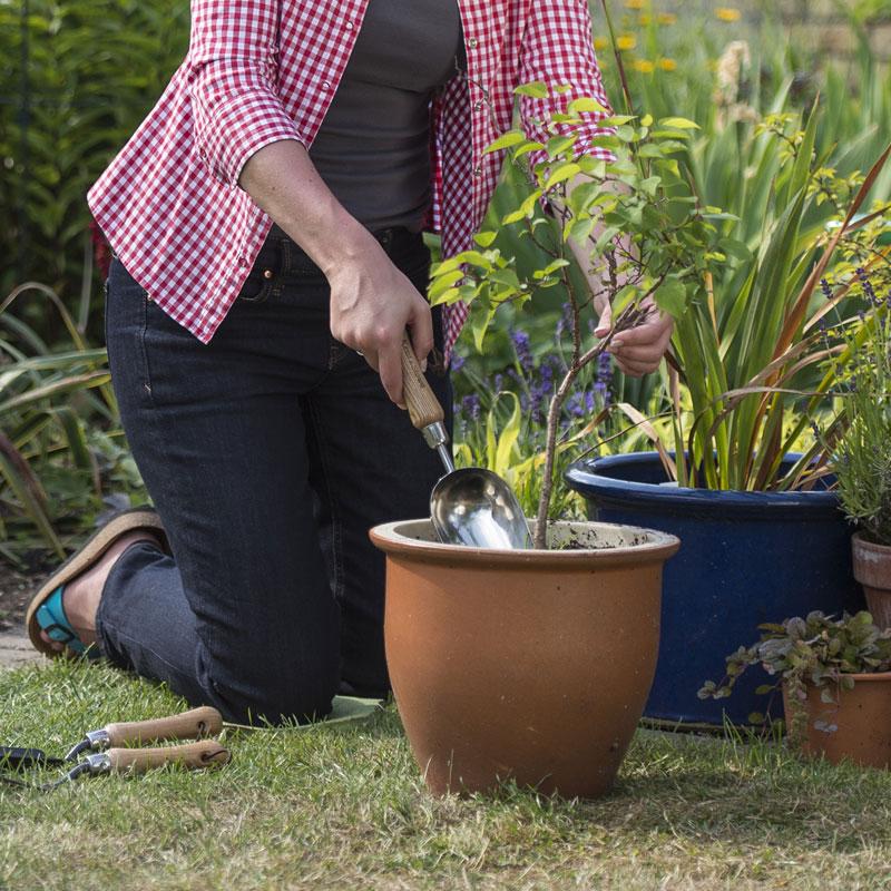 Jordskopa till trädgårdsarbete och plantering