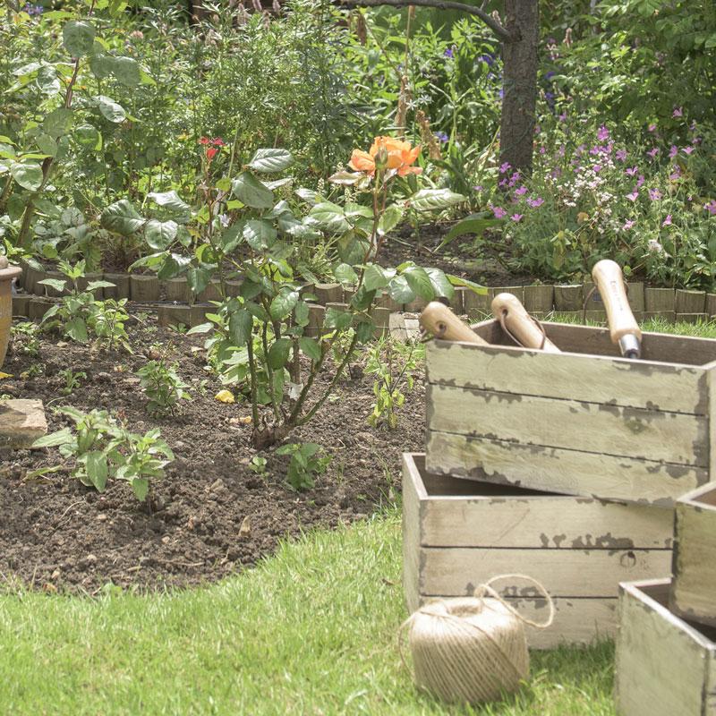 Rensningsverktyg Kantningsjärn till trädgården
