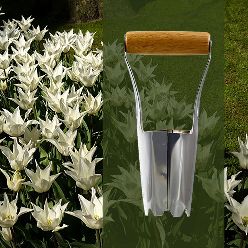 Järn för plantering av blomsterlök