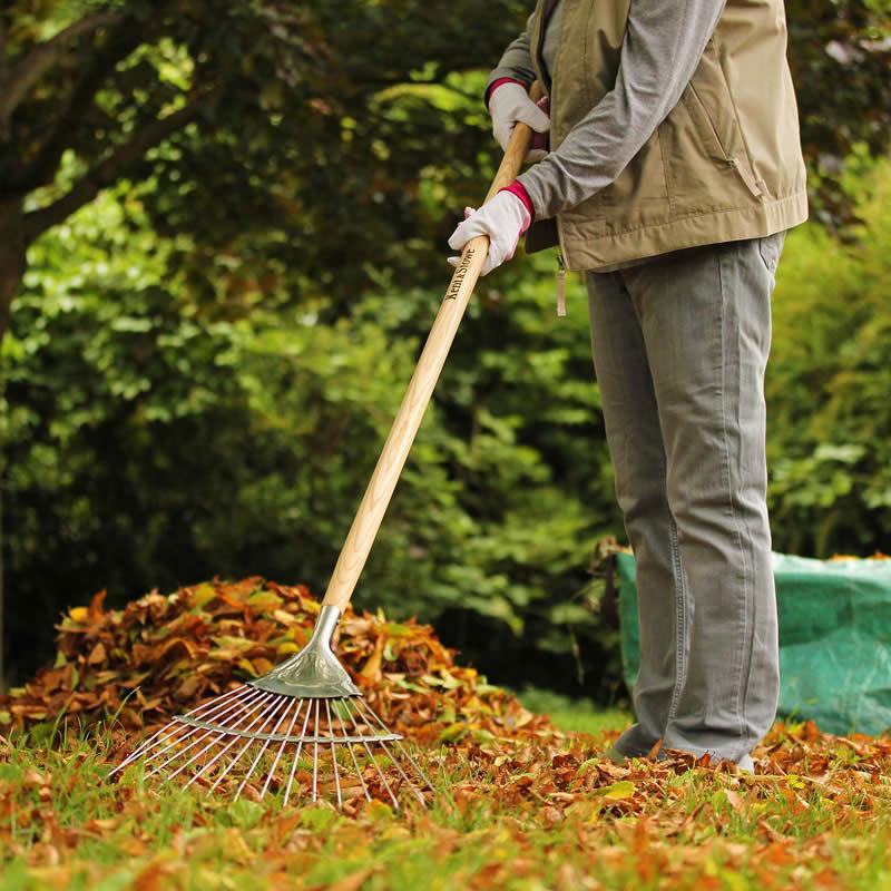 metallräfs för att kratta löv