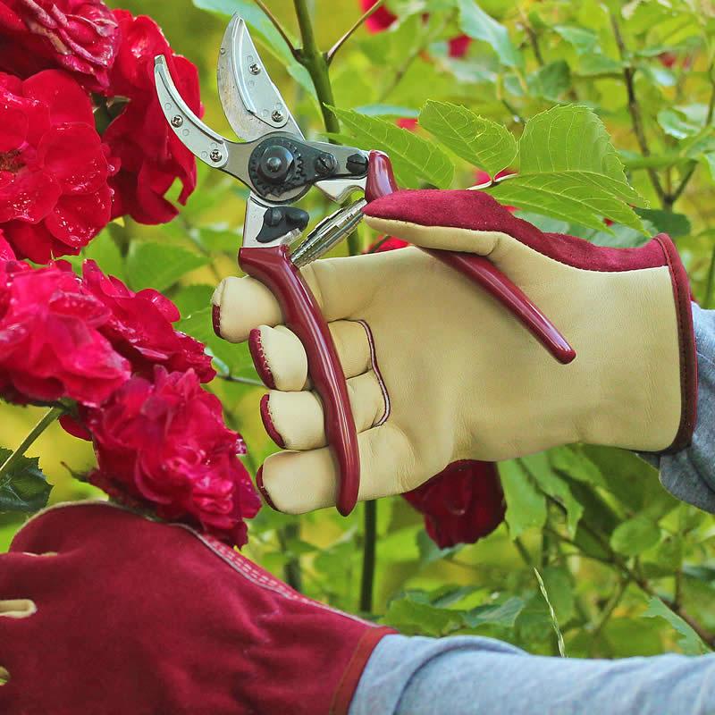 Premiumhandskar för trägården i mocka och läder, dam