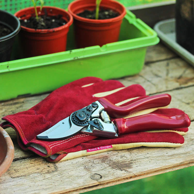 Trädgårdshandskar Premium i mocka och läder, dam