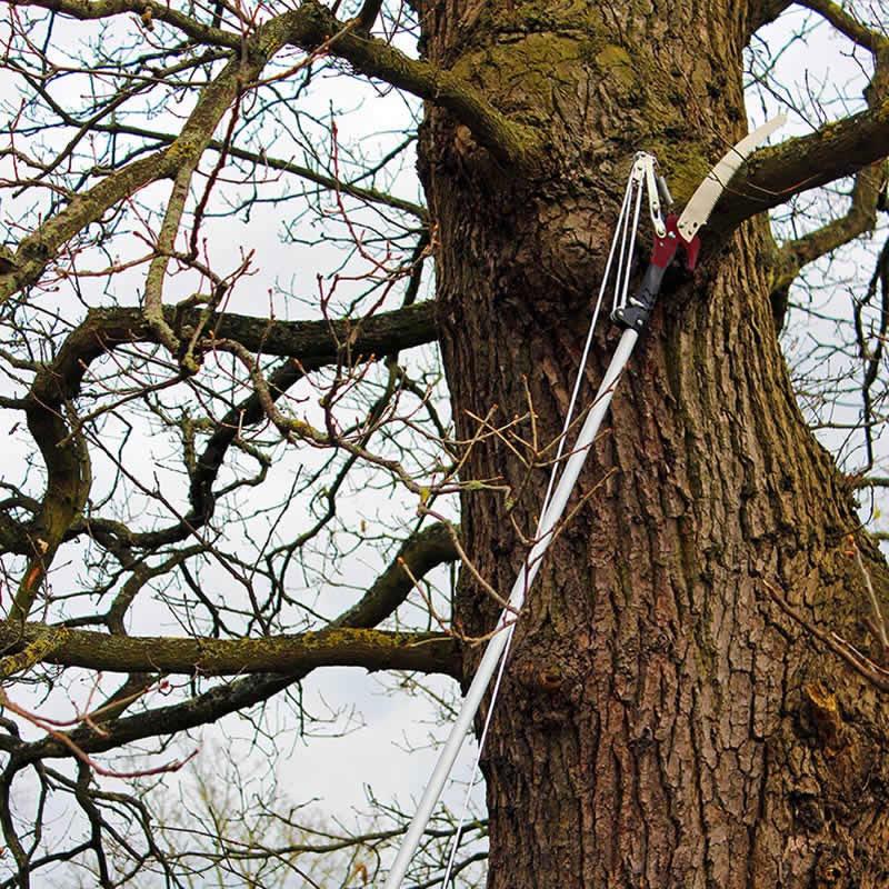 Trädsekatör med teleskopiskt handtag 3 meter långt