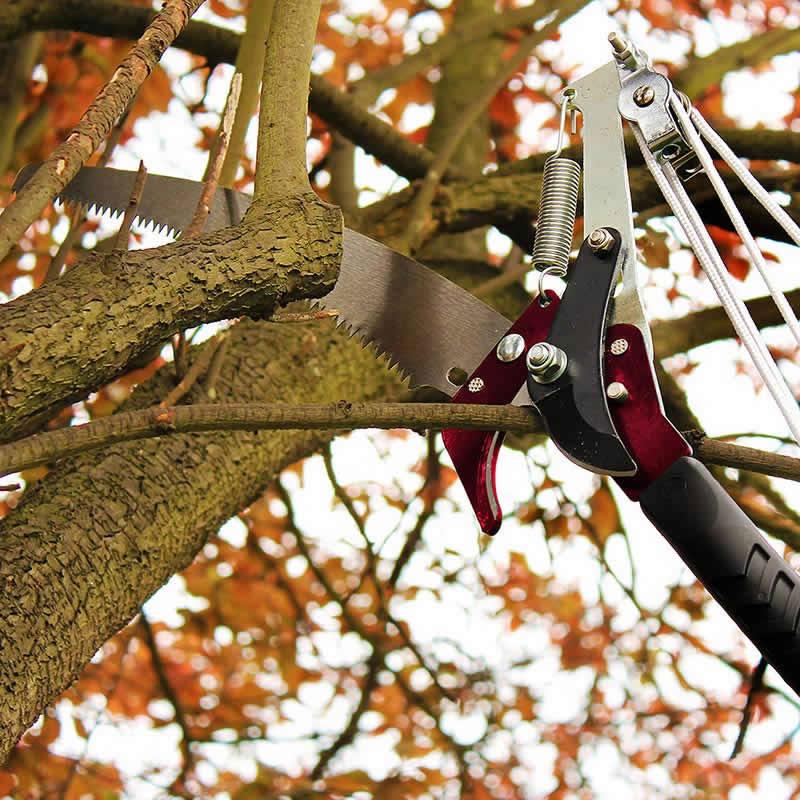 Trädsekatör i rostfrit stål