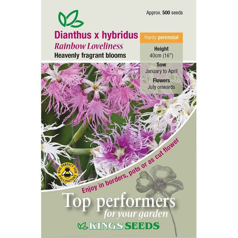 Fröpåse till Dianthus Hybridius, Rainbow Loveliness