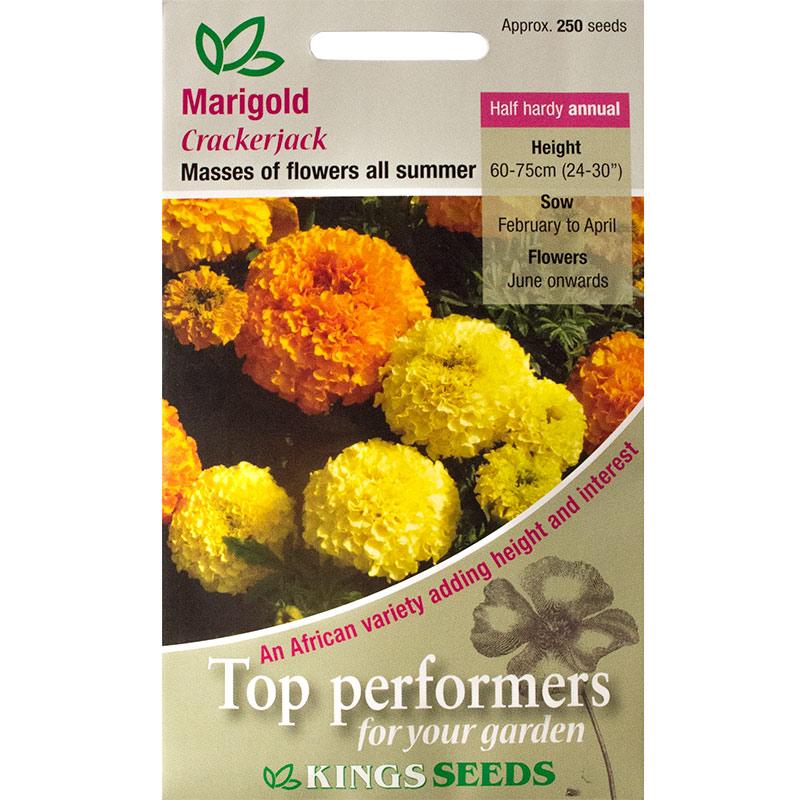 Fröpåse till Marigold African, Crackerjack