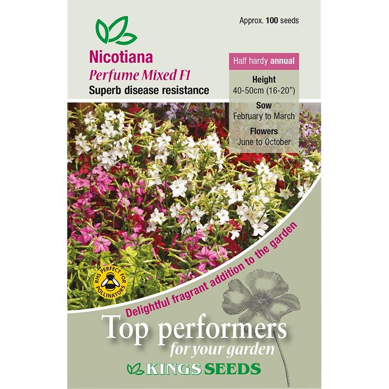 Fröpåse till Nicotiana, Perfume Mixed F1