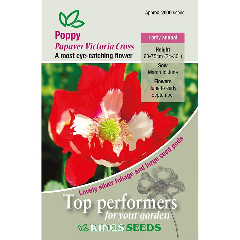 Fröpåse till Poppy, Victoria Cross