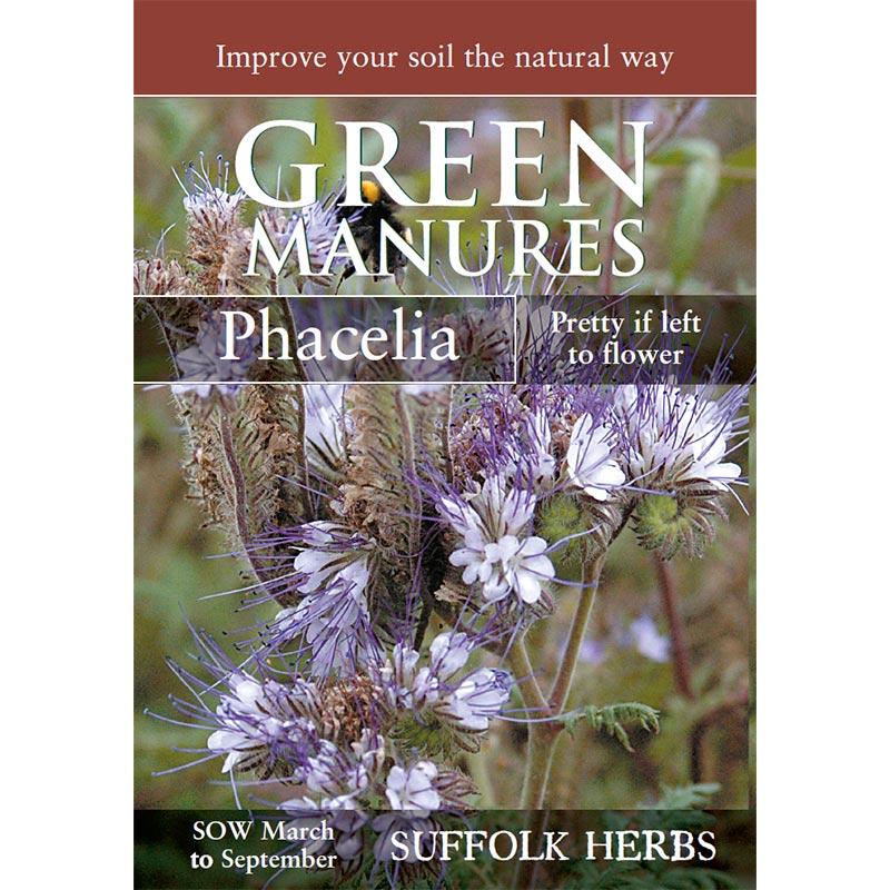 Fröpåse till gröngödsel, Honungsfacelia/Phacelia