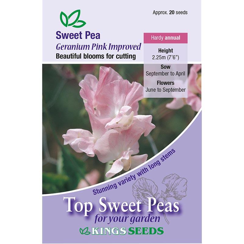 Luktärt, Geranium Pink Improved, Fröpåse till luktärt, geranium pink improved