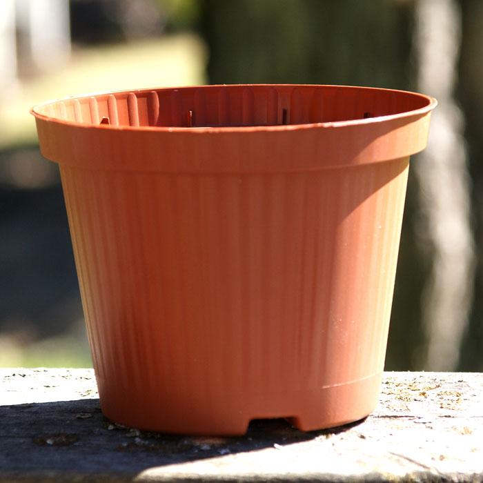 Terrakottafärgad plastkruka 12...-Terrakottafärgad kruka i plast 12 cm