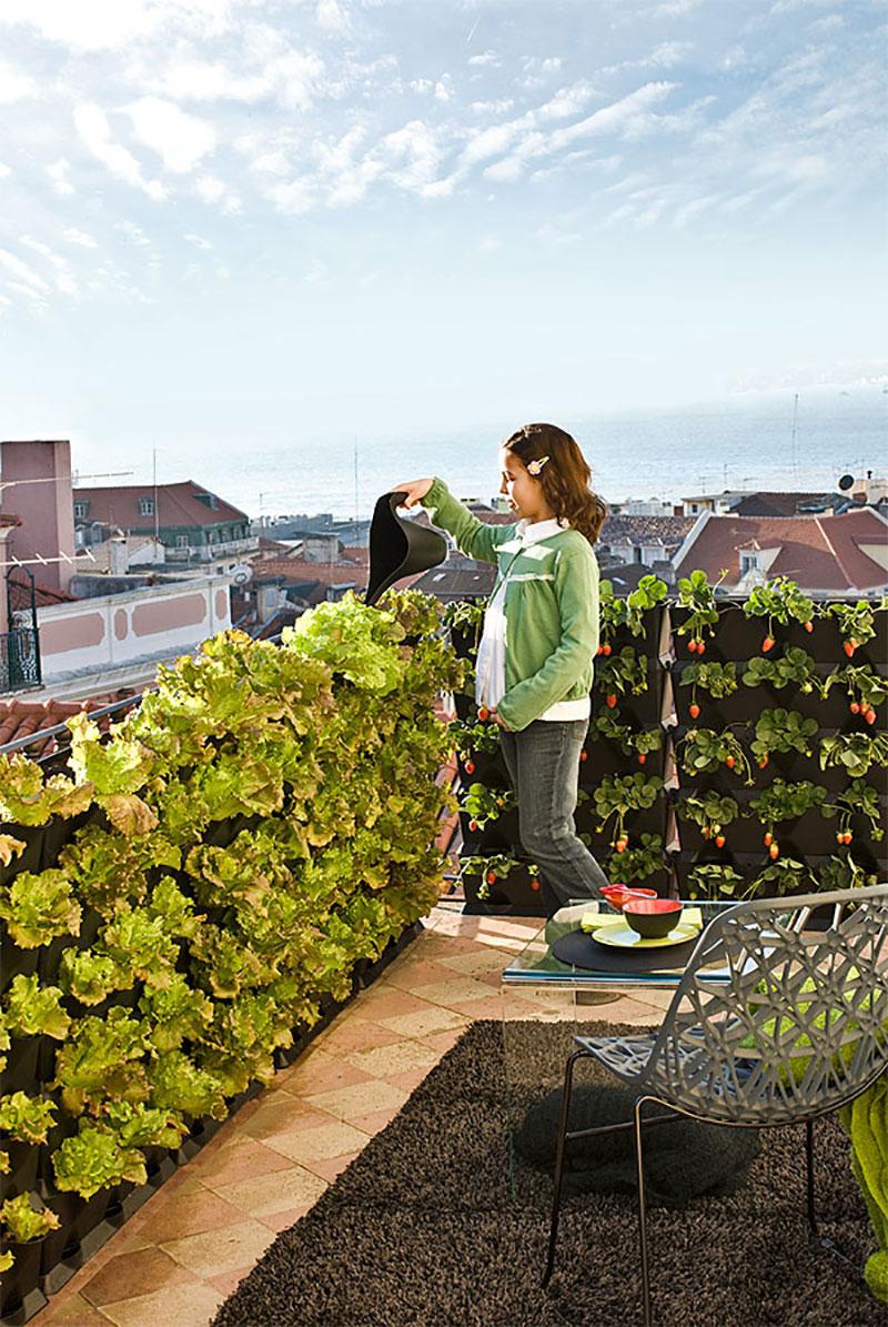 Minigarden som avskärmare på balkongen och terrassen