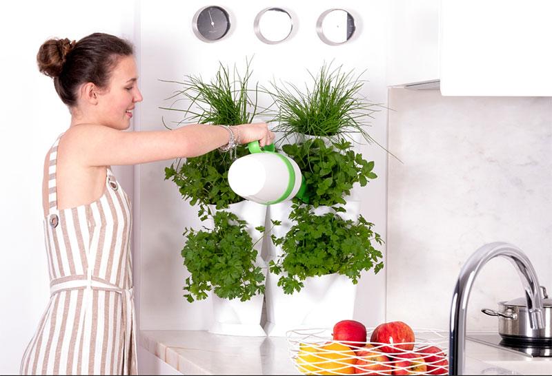 Minigarden One modul i köket