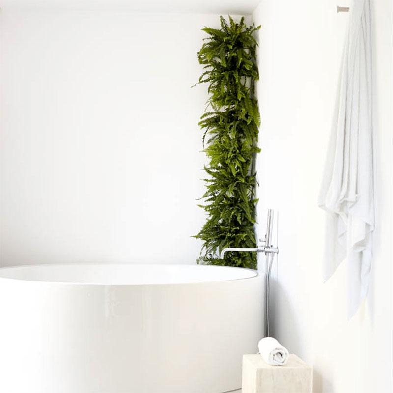 Minigarden som grönskande hörn i badrrummet