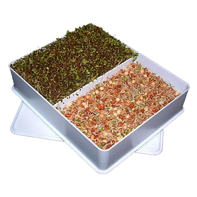 Groddbox Sproutmaster-Sproutmaster groddbox, stor