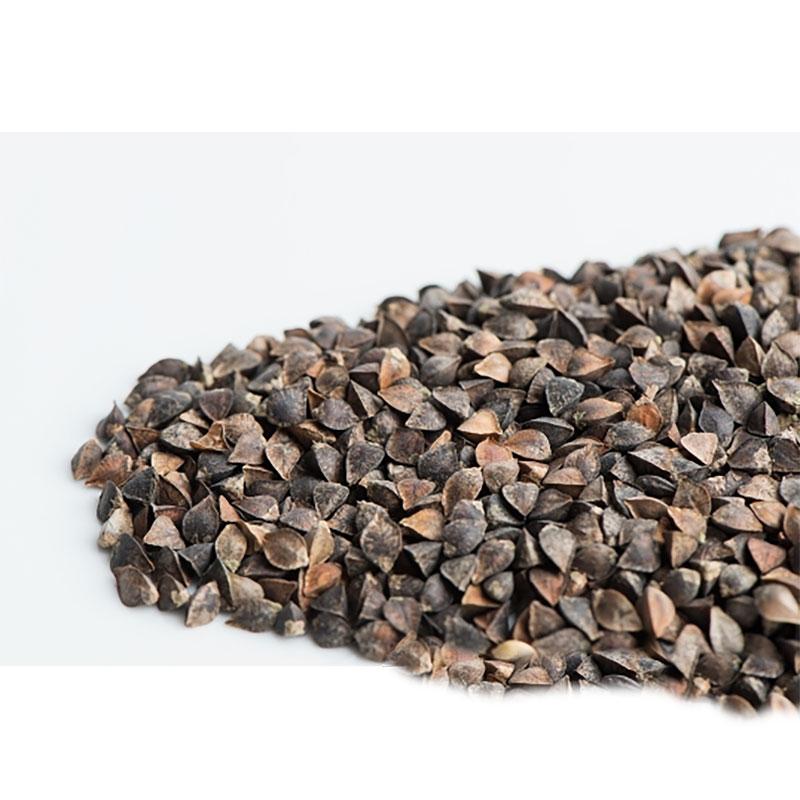 Bovetegroddar, Ekologiskt frö till groddning och skott Bovete med skal