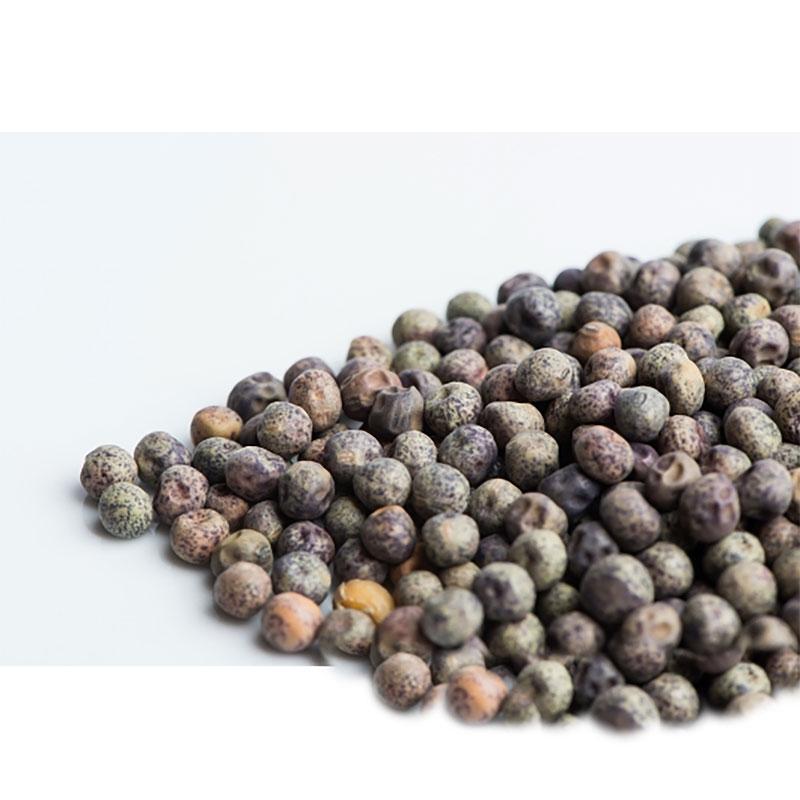 Ärtskott speckled tall shoots, Ekologiskt frö till groddning och ärtskott Yellow Speckled tall