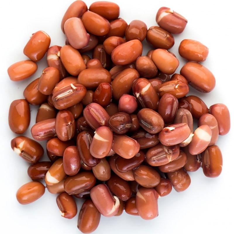 Groddfrö Adzukiböna-Ekologiskt frö till groddning och skott adzukiböna