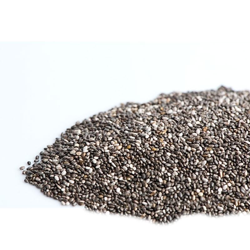 Groddfrö Chia Black, Ekologiskt frö till groddning och skott chia black