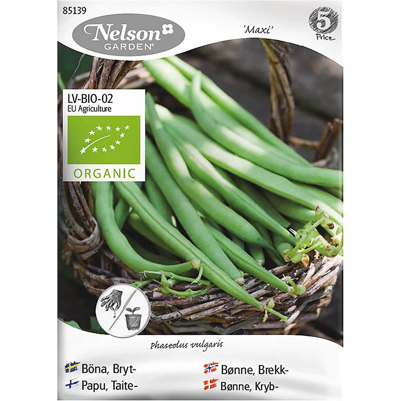 Brytböna Maxi, Organic-Ekologiskt frö til  brytböna, Maxi