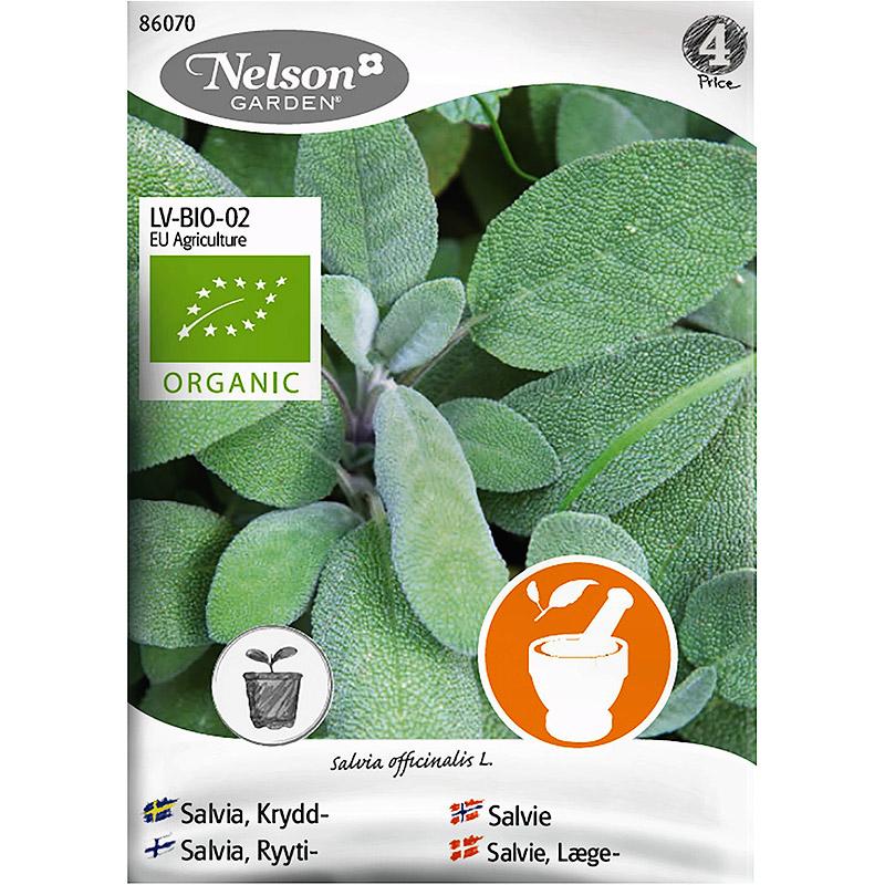 Kryddsalvia, Organic-Ekologiskt frö till kryddsalvia