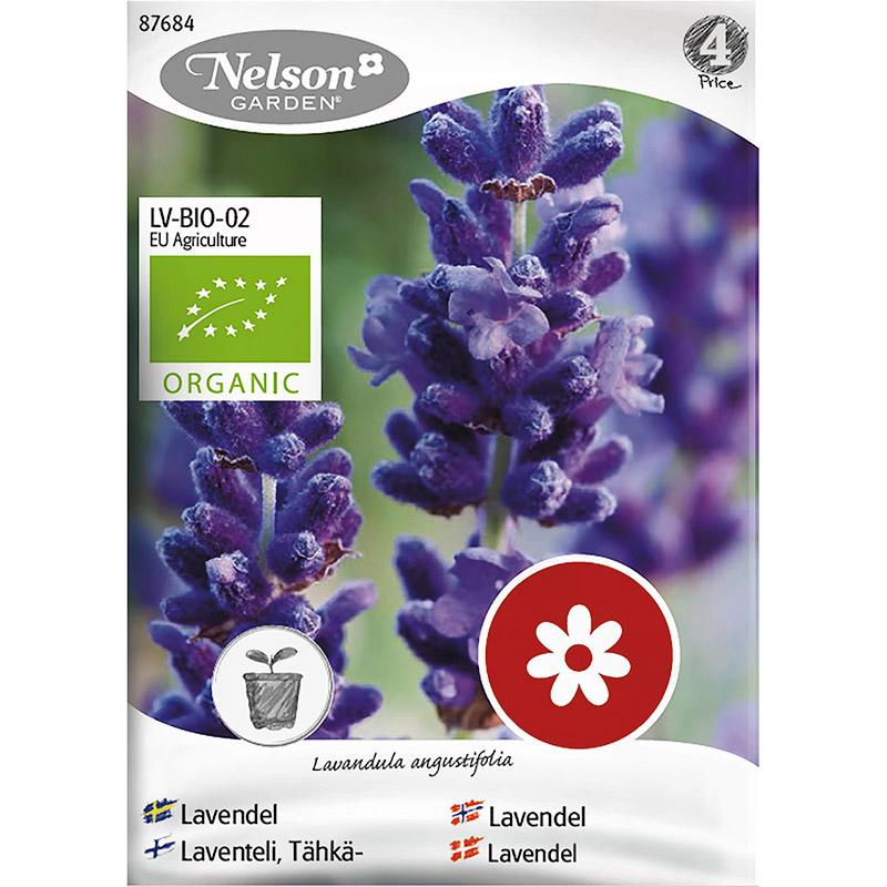 Lavendel, organic-Ekologiskt frö till lavendel