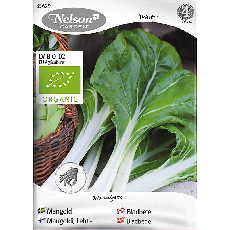 Mangold Whity, Organic-Ekologiskt frö till mangold, Whity