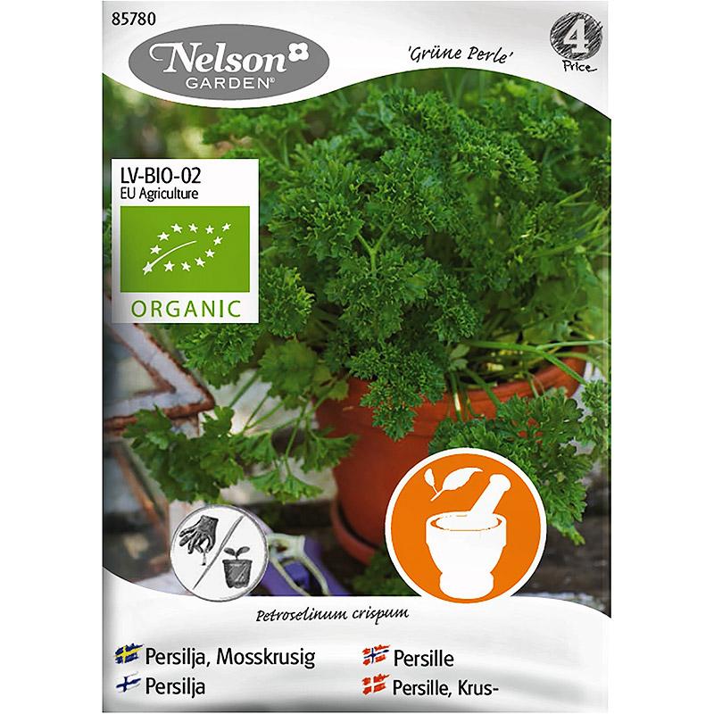 Persilja, Mosskrusig Grune Perle, Organic-Ekologiskt frö till mosskruspersilja, Grüne Perle