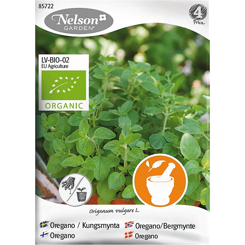 Oregano, Organic, Ekologiskt frö till oregano, Kungsmynt
