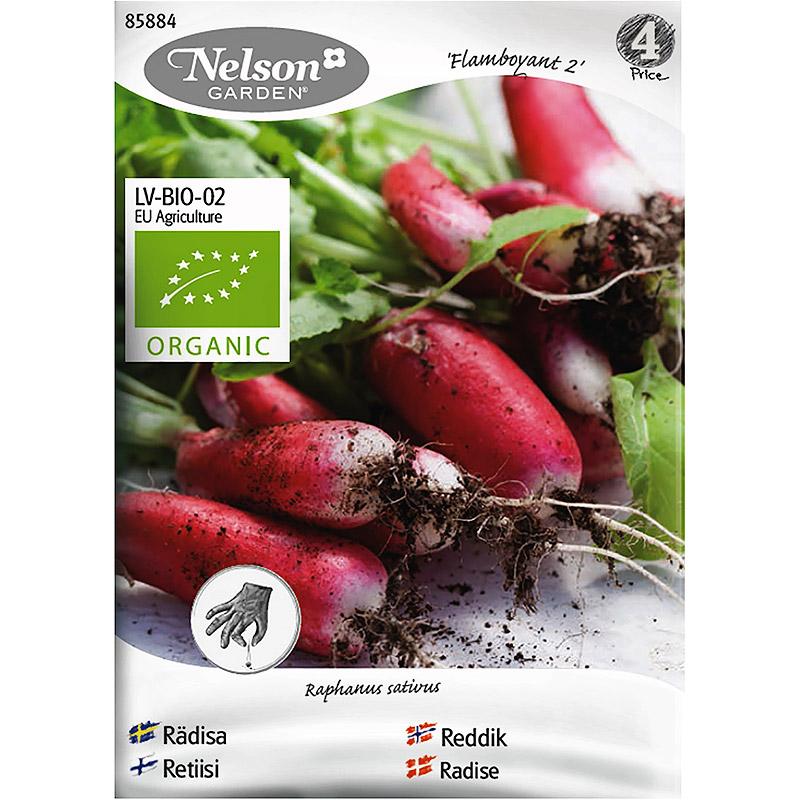 Ekologiskt frö till avlång rödisa' Flamboyant 2