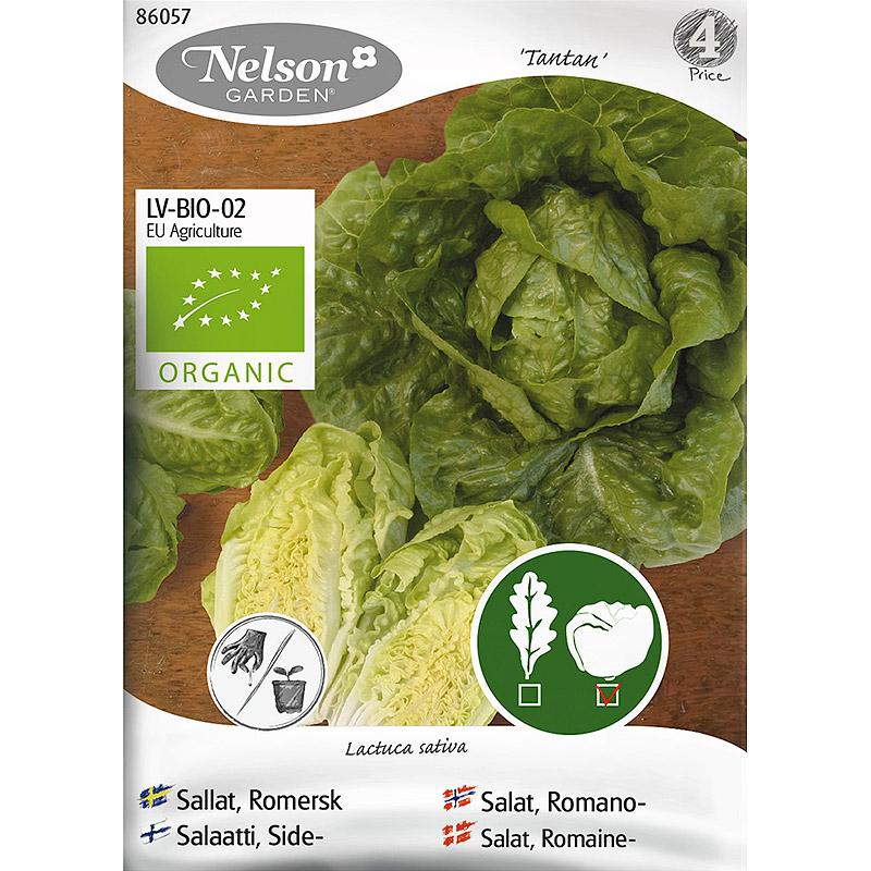 Romersk sallat Tantan, Organic-Ekologiskt frö till romersk sallat, Tantan