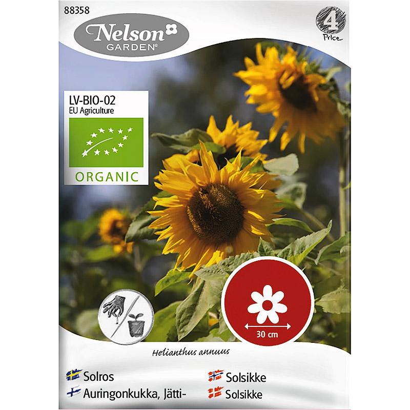 Solros, ekologiskt frö-Ekologiskt frö till solros